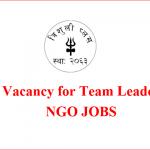 Team Leader | Trishuli Plus | ngo jobs vacancy 2021